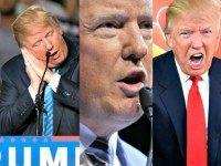 Three AP Trump Photos