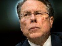 Getty Images / Photo of NRA's Wayne LaPierre