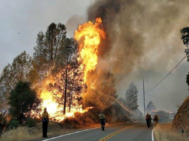 Wild Fire_ap-photo57-640x410