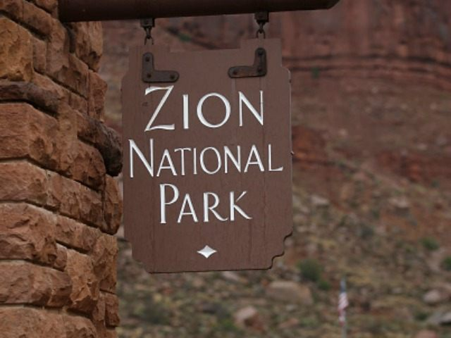 Cars enter Zion's National Park on September 15, 2015 in Springdale, Utah. Four hikers died and three are missing after a flash flood yesterday that also killed several woman and children in two vans that were swept away by the flood waters. (Photo by