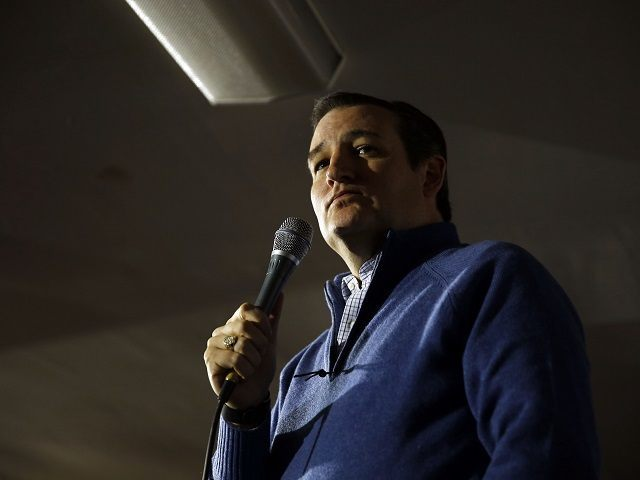 Republican presidential candidate, Sen. Ted Cruz, R-Texas, speaks during a campaign stop, Monday, Jan. 18, 2016, in Washington, N.H. (AP Photo/Matt Rourke)