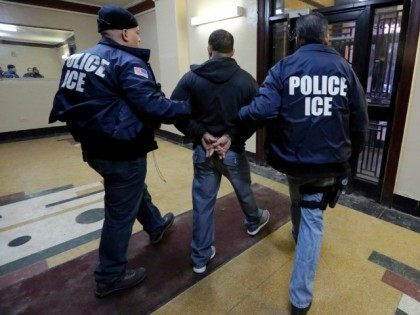 In this March 3, 2015 photo, Immigration and Customs Enforcement officers escort an arrestee in an apartment building, in the Bronx borough of New York, during a series of early-morning raids. Immigrant and Customs Enforcement say an increasing number of cities and counties across the United States are limiting cooperation …