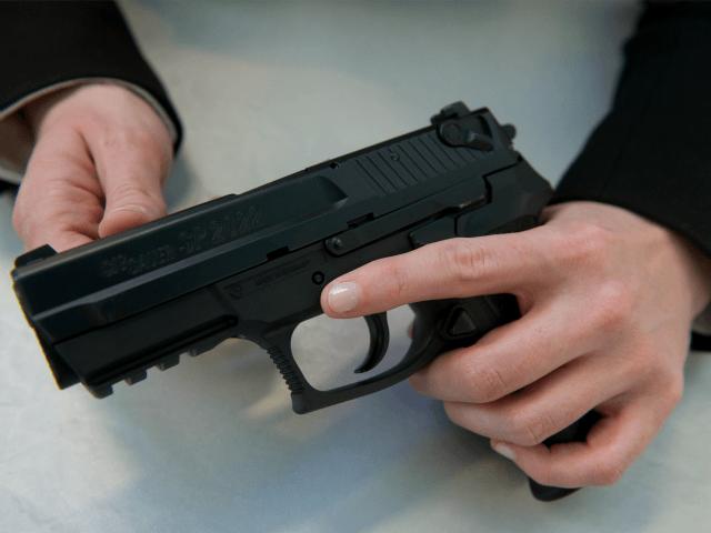 Pistols - sex firearms