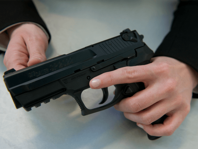 Incoming House Democrats Ready Bill to Criminalize Private Gun Sales