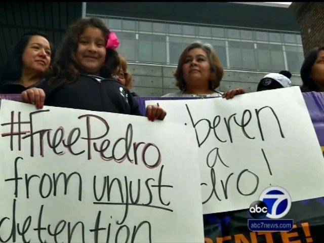 Free Pedro SF Illegal ABC News