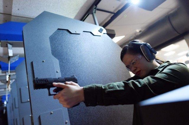 EU Gun Control