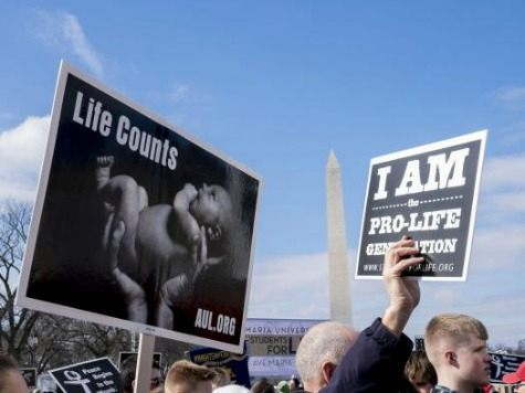 The March for Life anti-abortion rally will begin Friday at noon in Washington, D.C., despite expected blizzard conditions. Activists from across the nation, seen here at the 2015 rally, participate in the annual event protesting abortion and the 1973 Roe v. Wade Supreme Court decision legalizing abortion. Photo by
