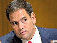 Phyllis Schlafly Charges Marco Rubio with Lying, Deception to Hide Amnesty Plans