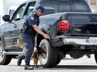 ** HOLD FOR CAMERON BLOCH/RELEASE DATE TBD** A U.S. Customs and Border Patrol agent runs his K-9 around a pickup truck in a search of weapons headed into Mexico Monday, May 4, 2009 at the Mariposa border crossing in Nogales, Ariz. President Barack Obama this spring promised his Mexican counterpart, …