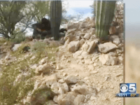 Local AZ TV Reporter Finds Mexican Cartel Scouts Over 100 Miles from Border