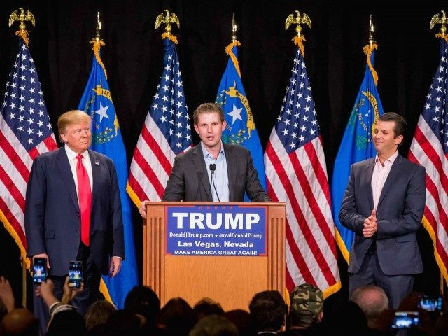 Eric Trump (Erik Kabik Photography / MediaPunch / IPX / AP)
