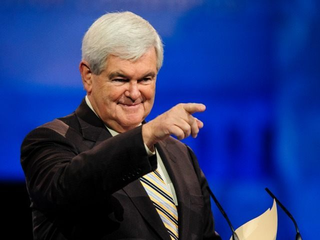 "WASHINGTON, DC - MARCH 16: Newt Gingrich, former Speaker of the U.S. House of Representatives. speaks at the 2013 Conservative Political Action Conference (CPAC) MARCH 16, 2013 in National Harbor, Maryland. This year's theme is ""America's Future: The Next Generation of Conservatives. New Challenges, Timeless Principles."" (Photo by Pete Marovich/Getty Images)"