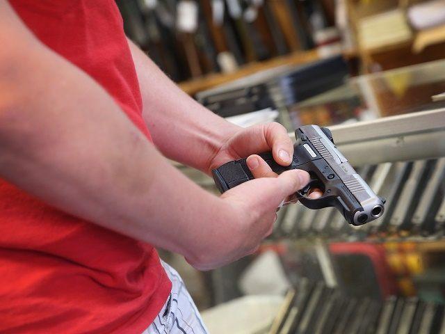 german gun ownership