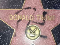 Donald Trump Walk of Fame swastika (Reddit)