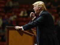 Republican presidential candidate Donald Trump speaks at a rally at the South Point Hotel & Casino on February 22, 2016 in Las Vegas, Nevada.