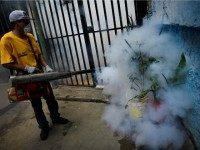 Zika Exposes Environmentalists' Deliberate DDT Death Toll
