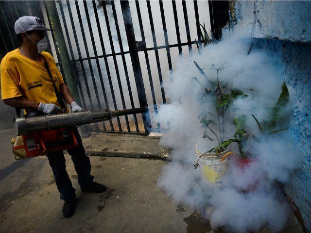 Carlos Becerra / Anadolu Agency/AFP