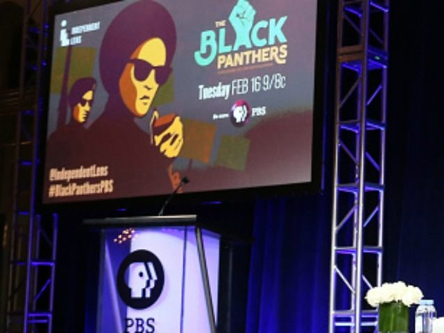 speak onstage during 'The Black Panthers: Vanguard of the Revolution' press conference as part of the PBS portion of the 2016 Television Critics Association Winter Press Tour at Langham Hotel on January 19, 2016 in Pasadena, California.