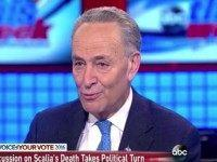 Schumer: Mainstream GOP Will Not Follow McConnell 'Over the Cliff' of Obstructionism on Scalia Successor