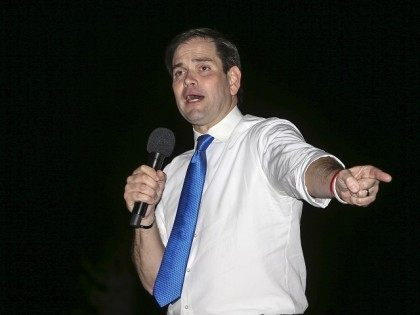 Republican presidential candidate Sen. Marco Rubio, R-Fla., address the crowd at a campaign rally in Ponte Vedra Beach, Fla., Tuesday, March 8, 2016. (AP Photo/Gary McCullough)