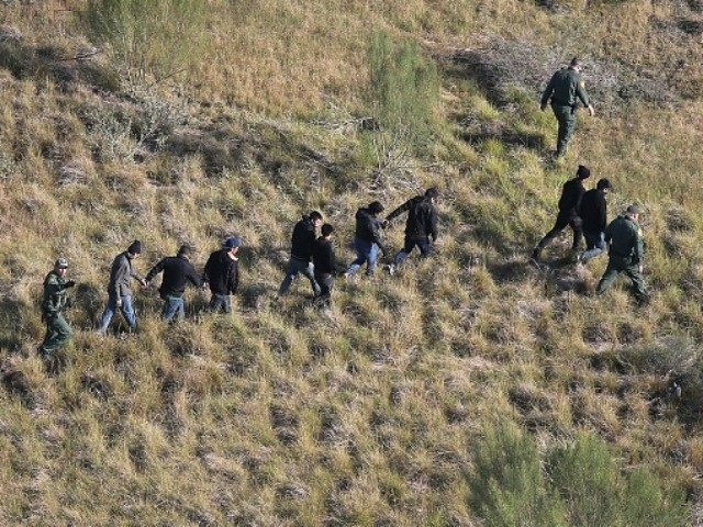 Border Patrol agents lead undocumented immigrants out the brush after capturing them near the U.S.-Mexico border on December 10, 2015 at La Grulla, Texas. Border security remains a key issue in the U.S. Presidential campaign. (Photo by
