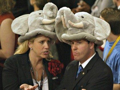 Convention Delegates AFP