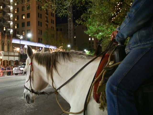 Horseback (Rich Fury / Invision / AP)