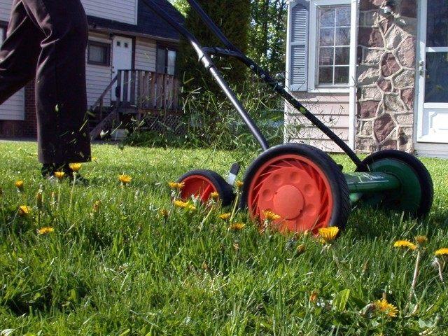 Lawnmower (Brian Boucheron / Flickr / CC / Cropped)