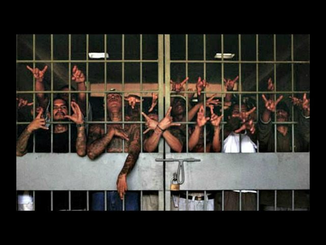 M13 Gang Members in Cell AP