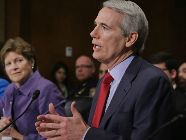 Sen. Rob Portman (R-OH) testify about the impact of heroin and prescription drug abuse and deaths in their states during a Senate Judicary Committee hearing in the Dirksen Senate Office Building on Capitol Hill January 27, 2016 in Washington, DC.