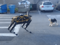 Robot dog (jurvetson / Screenshot / YouTube)