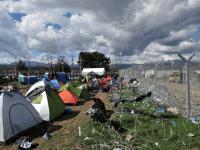 Migrant Deal