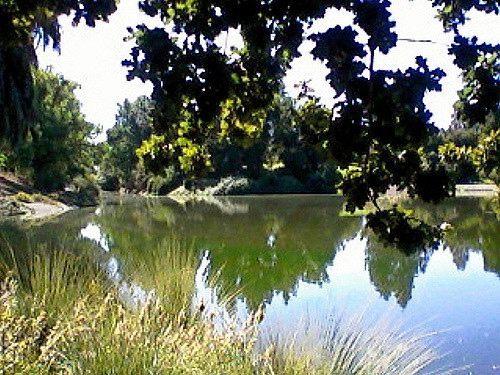 UC Davis Arboretum (Ruby 2417 / Flickr / CC)
