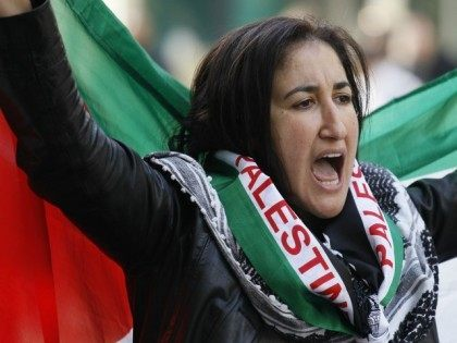 pro-Palestinian activists