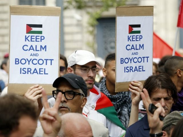 A Pro-Palestinian demonstrator carries placards reading 'Keep calm and boycott Israel' on the Republique square in Paris, ahead of a banned demonstration against Israel's military operation in Gaza and in support of the Palestinian people, on July 26, 2014