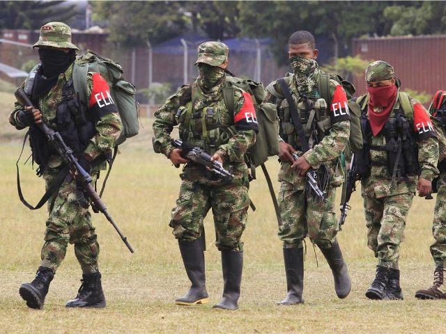 """Foto de archivo de miembros desertores de la guerrilla colombiana ELN caminando hacia una base militar para rendirse y entregar sus armas, en Cali. 16 de julio de 2013. La segunda guerrilla de Colombia, el Ejército de Liberación Nacional (ELN), anunció el viernes que realizará un """"paro armado"""" de tres …"""