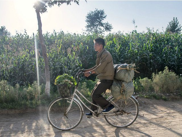 NAMPO, NORTH KOREA - AUGUST 22: A man carries his vegetables with bike on August 21, 2015 in Nampo, North Korea. North and South Korea today came to an agreement to ease tensions following an exchange of artillery fire at the demilitarized border last week. (Photo by Xiaolu Chu/Getty Images)