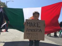 Illegal Immigration Activists Break Out Mexican Flags to Protest Trump