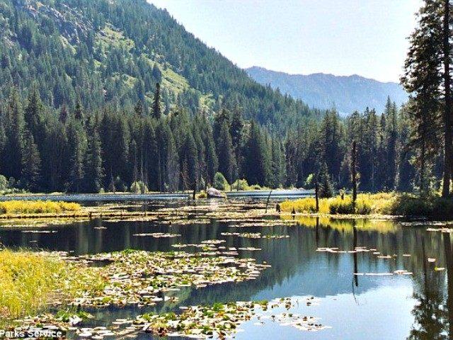 Coon Lake, Howard Lake Natl Parks Services