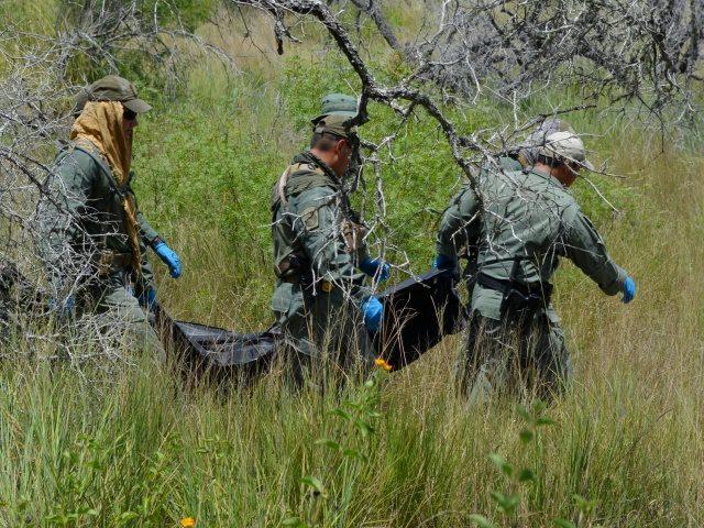 BORSTAR Border Patrol Agents remove body of deceased illegal alien in Brooks County. (Photo: Bob Price/Breitbart Texas)