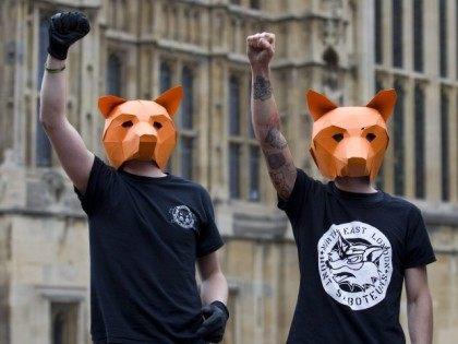 BRITAIN-POLITICS-HUNTING-FARMS-LIFESTYLE-ANIMAL