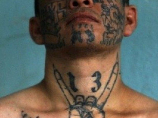 Image result for ms-13 gang
