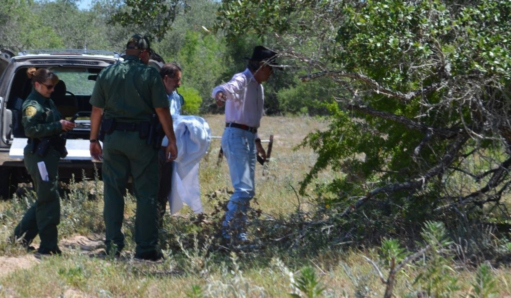 Brooks County Chief Deputy Benny Martinez approaches the body of a deceased woman found after being left behind to die in Brooks County. Border Patrol agents discovered the skeletal remains of what appeared to be a female illegal immigrant. (File Photo: Breitbart Texas/Bob Price)