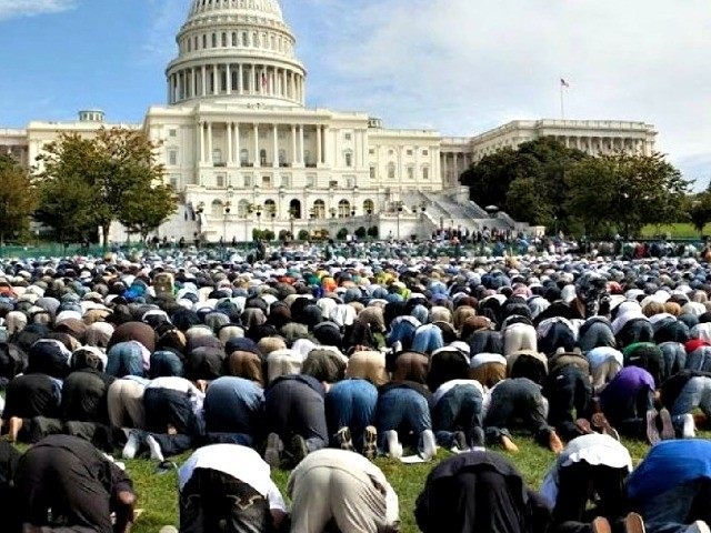 Image result for speaker ryan with muslim