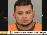 fugitive illegal alien