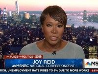 Joy Reid: MD School Shooter Would Have Used AR-15 'If the NRA Had Its Way'