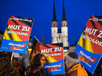 Poll: Germany's AfD Populists Second Most Popular Party for First Time