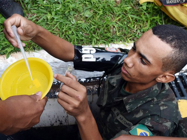 BRAZIL, Brasília : A member of the Brazilian armed forces looks for larvae of the Aedes aegypti mosquito, which transmits dengue and Chikungunya fever and Zika virus, at a school in Brasilia, on February 19, 2016. On Friday, the government held a national day of mobilization against the Zika virus …