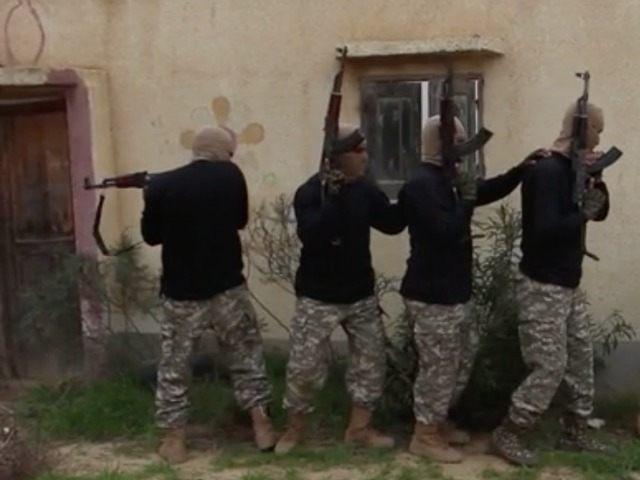 islamic state sinai training