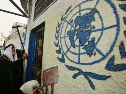 A Palestinian refugee knocks on the closed gate of the United Nations Relief and Works Agency (UNRWA) headquarters with his walking stick. (photo credit:REUTERS)